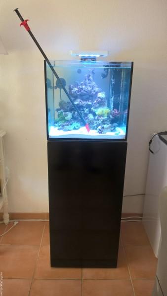 Mumu Reef - Decors fini