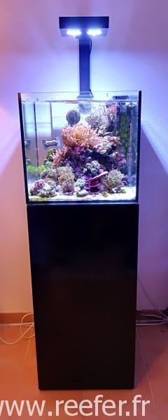 Elos mini et Hydra 26 HD